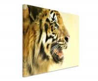 Premium Leinwandbild Tiger