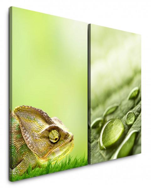 2 Bilder je 60x90cm Chamäleon Grün Wassertropfen Tropfen Echse Makro Fotokunst