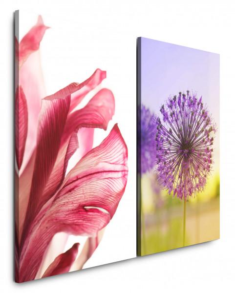 2 Bilder je 60x90cm Blume Makro Pusteblume Sommer Sonnenschein Rot Violett