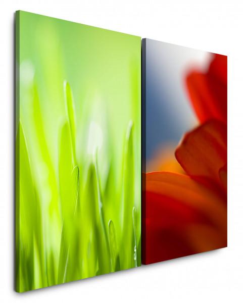 2 Bilder je 60x90cm Wiese Gras Grün Rot Blumen Frische Sommer