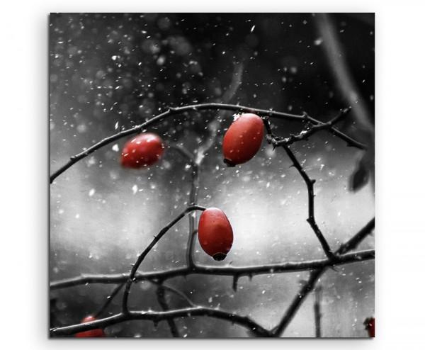 Leinwandbild 3 Hagebutten rot bei Schneefall