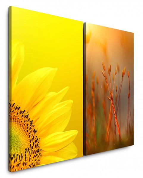 2 Bilder je 60x90cm Sonnenblume Gelb Sommer Warm Rot Nahaufnahme Makrofotografie