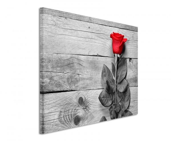 Premium Leinwandbild Die Rose